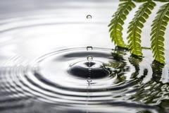 丢弃水 免版税图库摄影