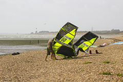 两三个年轻人努力反对强风他们的巴拉滑翔机为下午体育做准备在Titchfield海滩 免版税库存照片