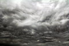 两三只鸟通过一朵黑暗的雷云飞行 库存照片
