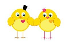 两三逗人喜爱的鸡 免版税库存图片