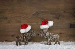 两与红色白色圣诞老人帽子的手工制造木驯鹿在雪 免版税库存照片