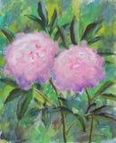 两与绿色叶子的大紫色花,夏天,牡丹 库存图片