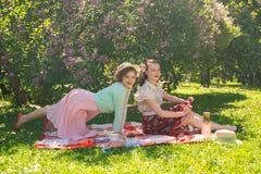两个俏丽的女朋友坐在绿草的红色毯子和有夏天野餐 获得愉快的妇女休息和乐趣  库存图片