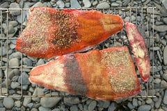 两个健康新鲜的三文鱼内圆角用香料 免版税库存照片