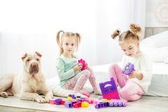两个儿童游戏玩具在屋子里 狗坐 浓缩 免版税图库摄影