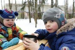 两个兄弟在冬天 库存图片
