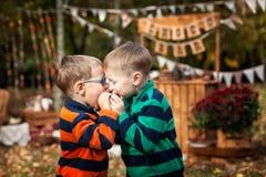 两个兄弟在秋天公园 免版税库存图片