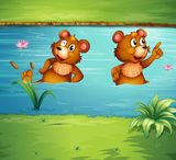 两个动物在池塘 免版税图库摄影