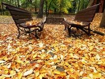 两个单独长木凳在秋天公园与 免版税库存图片