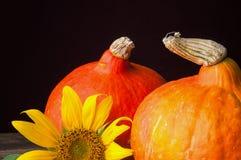 两个南瓜和向日葵在葡萄酒木桌上 图库摄影