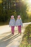 两个双姐妹手拉手审阅秋天公园 免版税库存照片