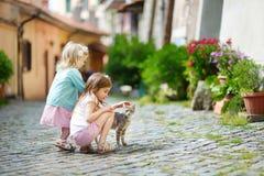 两个可爱的妹和猫 免版税库存图片