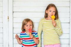 两个可爱的孩子室外画象  免版税库存照片