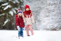 两个可爱的小女孩获得乐趣一起在美丽的冬天公园 使用在雪的美丽的姐妹 免版税库存照片