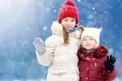 两个可爱的小女孩获得乐趣一起在美丽的冬天公园 使用在雪的美丽的姐妹 库存图片