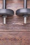 两个哑铃的垂直的图象 免版税图库摄影