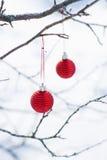 两个圣诞节球 库存照片
