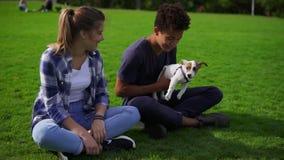 两个多种族朋友坐在公园享受天的绿草,当拿着逗人喜爱的小的起重器罗素时 股票视频