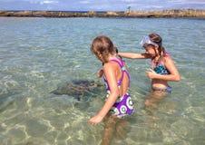 两个女孩喂养一只海龟 库存照片