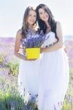 两个女孩在淡紫色领域走 库存照片