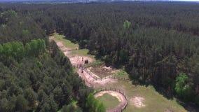 两个女孩在马乘坐靠近森林晴朗的春日,空中英尺长度 影视素材