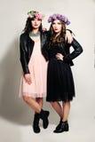 两个女孩朋友时装模特儿 库存图片