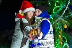 两个女孩用户外圣诞节香槟 免版税库存照片