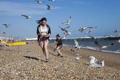 两个女孩用食物跑远离在海滩攻击他们的鸥 图库摄影