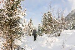 两个女孩背包徒步旅行者在冬天森林里 免版税库存图片
