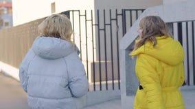 两个女性朋友在街道的冷和晴朗的秋天天走,聊天和说闲话,后面视图 影视素材