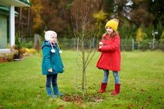 两个妹获得乐趣一起在美丽的秋天公园 免版税图库摄影