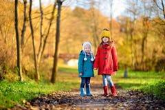 两个妹获得乐趣一起在美丽的秋天公园 库存图片
