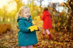 两个妹获得乐趣一起在美丽的秋天公园 图库摄影