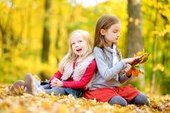 两个妹获得乐趣一起在美丽的秋天公园 免版税库存照片