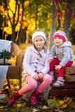 两个姐妹在秋天公园 库存图片