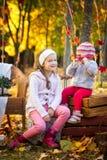 两个姐妹在秋天公园 免版税库存图片