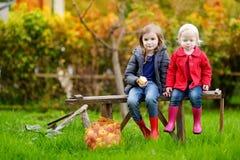 两个姐妹坐一条长凳在秋天天 免版税库存图片