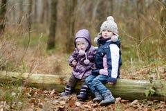 两个姐妹坐日志 库存图片