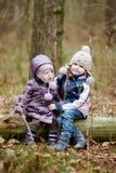 两个姐妹坐日志 库存照片
