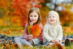 两个姐妹获得乐趣一起在秋天公园 库存图片