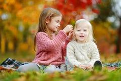 两个姐妹获得乐趣一起在秋天公园 免版税库存照片