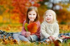两个姐妹获得乐趣一起在秋天公园 免版税图库摄影
