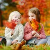 两个姐妹获得乐趣一起在秋天公园 免版税库存图片