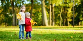 两个姐妹获得乐趣在美丽的秋天公园 免版税库存图片