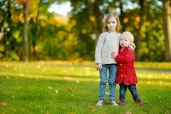 两个姐妹获得乐趣在美丽的秋天公园 图库摄影