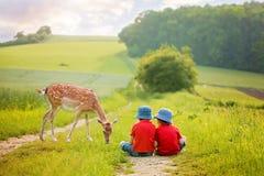 两个学龄前孩子,坐在农村,冥想litt 图库摄影