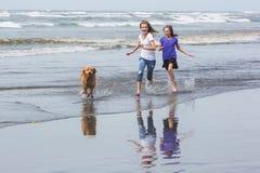 两个孩子和一条狗在海滩 库存图片