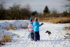 两个孩子和他们的狗在冬天步行 库存图片