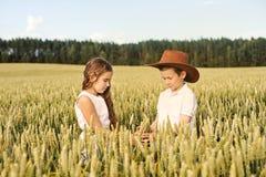 两个孩子男孩和女孩审查玉米穗在麦田的 免版税图库摄影