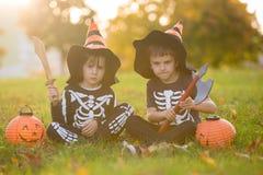 两个孩子,男孩兄弟在有万圣夜服装的公园 免版税库存图片